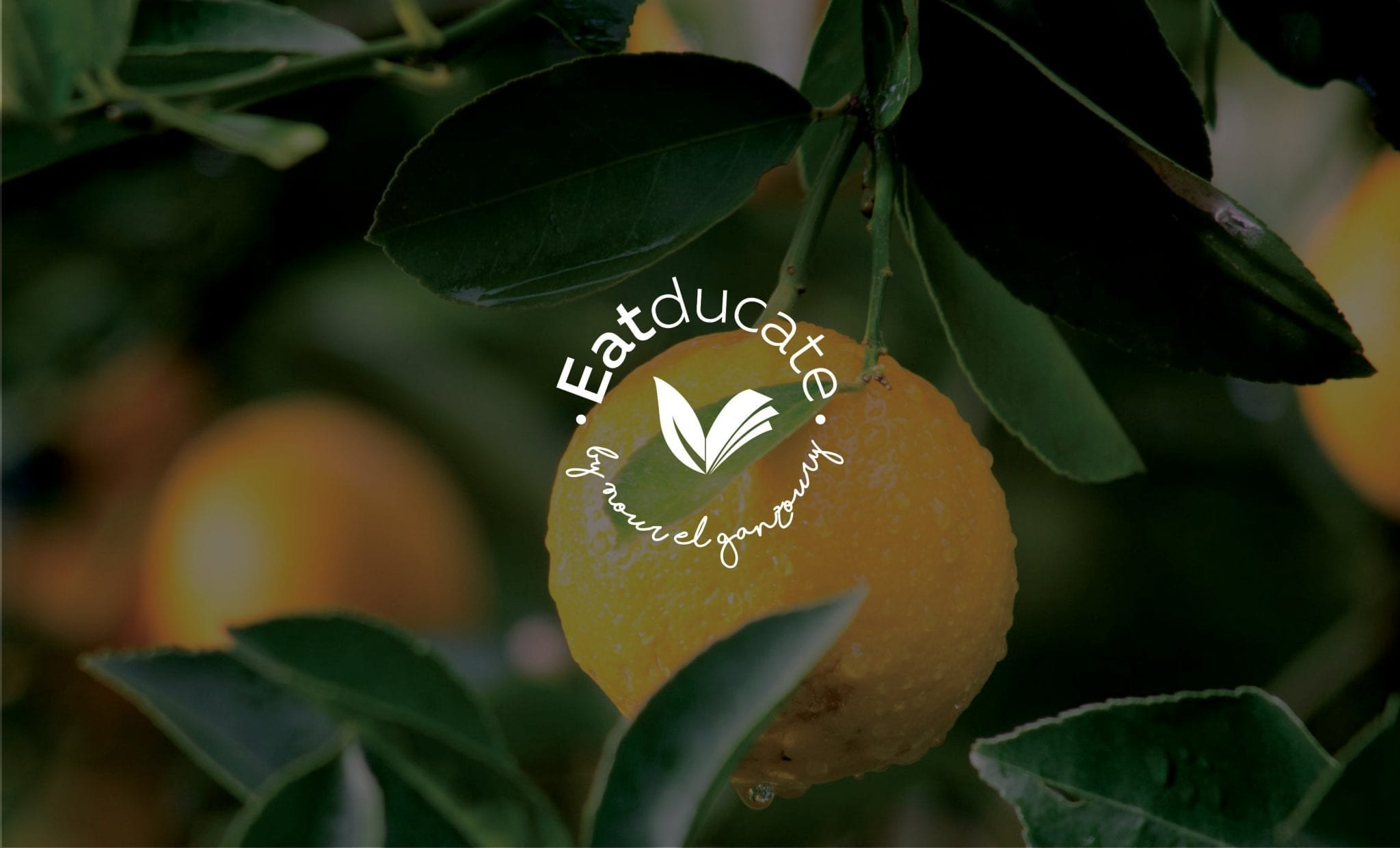 Eatducate Branding jpegs3
